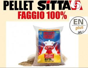 Pellet MISTER FOCUS FAGGIO SITTA
